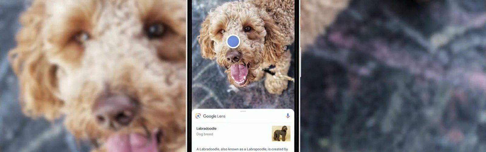 """قوقل تحضر لتطوير """"Google Lens"""" لتصبح بإمكانها حل المعادلات الرياضية المعقدة"""